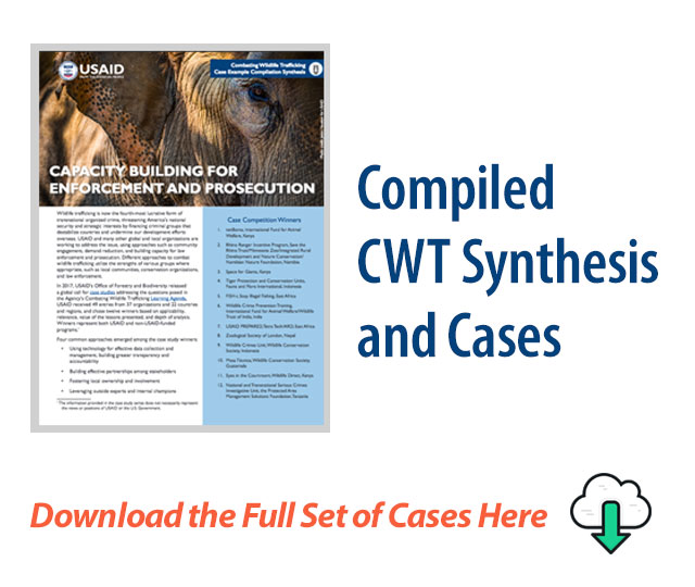 Compiled CWT Synthesis and Cases