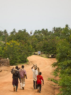 How Farmers in Africa are Restoring Degraded Lands and Enhancing Resilience