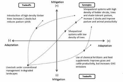 Climate-smart landscapes- opportunities and challenges for integrating adaptation and mitigation in tropical agriculture