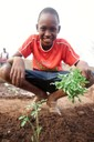 "A student proudly displays one of his tomato transplants during an afternoon at the Kabacoto ""Feeding the Future"" School Garden in Senegal (Feed the Future photo contest)."