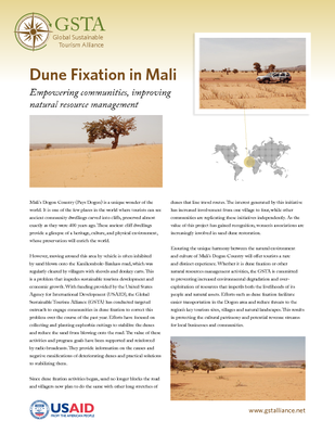 Dune Fixation in Mali