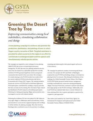 Greening the Desert Tree by Tree