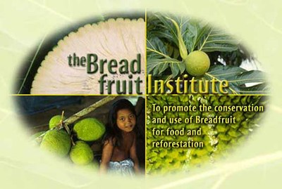 Breadfruit Initiative: Executive Summary