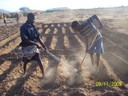 Land preparation in Kelafo, a town in the Gode zone of the Somali region of Ethiopia.