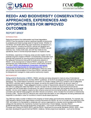 REDD+ and Biodiversity Conservation: Approaches, Experiences and Opportunities for Improved Outcomes: Report Brief