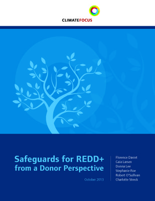 Safeguards for REDD+ from a Donor Perspective
