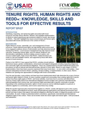 Report Brief: Tenure Rights, Human Rights and REDD+: Knowledge, Skills and Tools for Effective Results