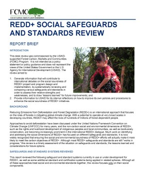 Report Brief: REDD+ Social Safeguards and Standards Review