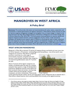 Mangroves in West Africa: A Policy Brief