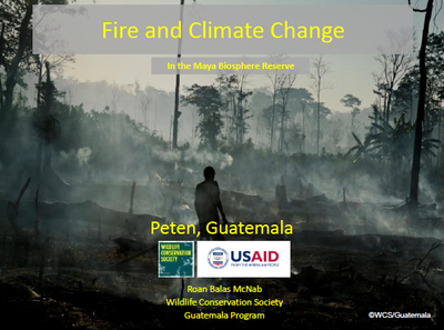 Fire and Climate Change In the Maya Biosphere Reserve