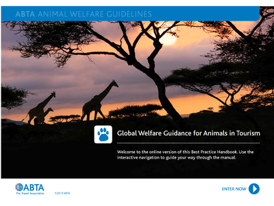 Global Welfare Guidance for Animals in Tourism