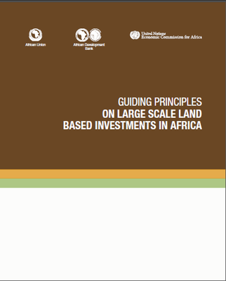 Guiding Principles on Large Scale Land Based Investments in Africa