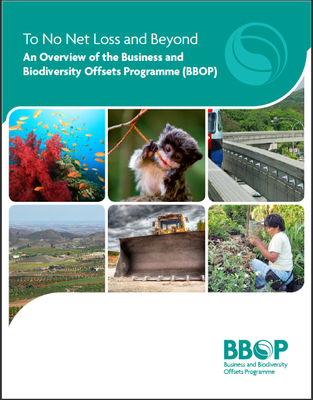 To No Net Loss and Beyond: An Overview of the Business and Biodiversity Offsets Programme (BBOP)
