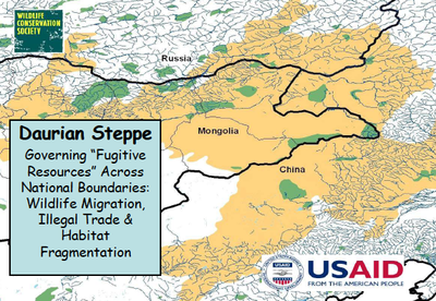 "SCAPES: Daurian Steppe Governing ""Fugitive Resources"" Across National Boundaries"