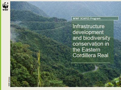 SCAPES: Infrastructure development and biodiversity conservation in the Eastern Cordillera Real