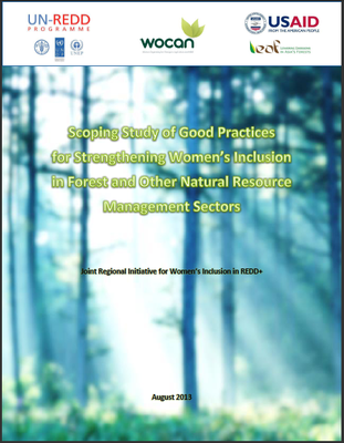 Scoping Study of Good Practices for Strengthening Women's Inclusion in Forest and Other Natural Resource Management Sectors: Joint Regional Initiative for Women's Inclusion in REDD+