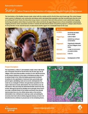 Surui: Carbon Finance & the Protection of Indigenous Peoples' Forests in the Amazon