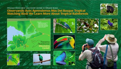 Canoe and Kayak Assessment for Lago Calamito, Panama Rainforest Discovery Center