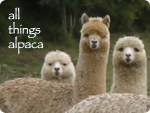 Wildlife Friendly Enterprise Network: All Things Alpaca