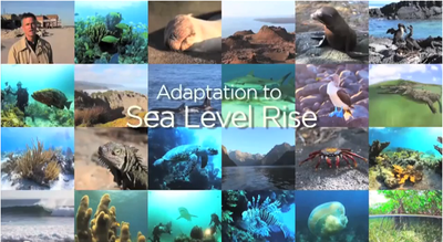 Adaptation to Sea Level Rise: UNEP RONA Launches Video #6: Two Minutes on Oceans with Jim Toomey!