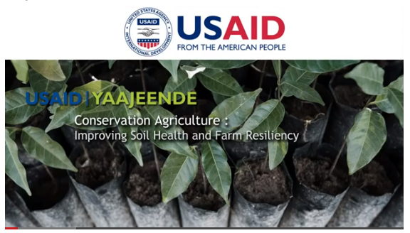 Conservation Agriculture and Bioreclamation of Degraded Lands in Senegal: restoring productivity and resilience of degraded lands to improve nutrition and women's incomes