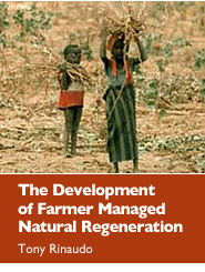 Cover: The Development of Farmer Managed Natural Regeneration Featured September 22, 2010