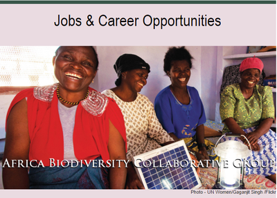 ABCG Jobs & Career Opportunities: January 2016