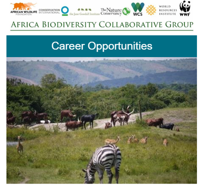 ABCG Career Opportunities February 2019