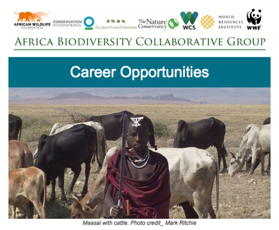 ABCG-Exciting Career Opportunities: Programme manager and coordinator postions now available!