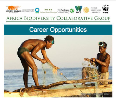 ABCG Career Opportunities: Consultant and Coordinator positions now available! May 2018