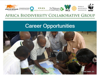 ABCG Career Opportunities May 2019
