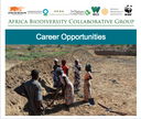 ABCG Career Opportunities: October 2018