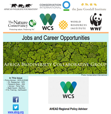 ABCG: Jobs and opportunities February 2016