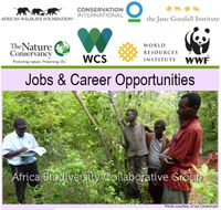 ABCG Jobs & Career Opportunities: November 2015
