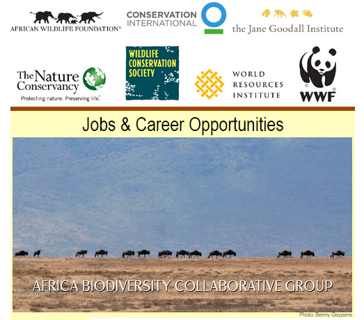 ABCG: Jobs and Career Opportunities - September, 2015