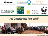 ABCG: Job Opportunities from WWF