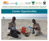 Africa Biodiversity Collaborative Group Career Opportunities September 2017