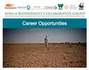 Career Opportunities: Head of conservation division and management positions now available!