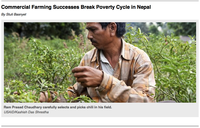 Commercial Farming Successes Break Poverty Cycle in Nepal