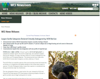 Largest Gorilla Subspecies Declared Critically Endangered by IUCN Red List