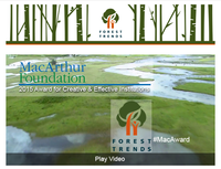 MacArthur Foundation Recognizes Forest Trends for Extraordinary Creativity and Effectiveness