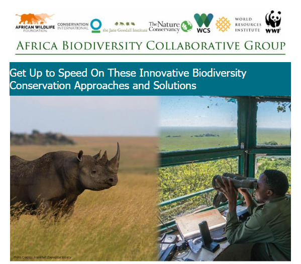 Get Up to Speed On These Innovative Biodiversity Conservation Approaches and Solutions