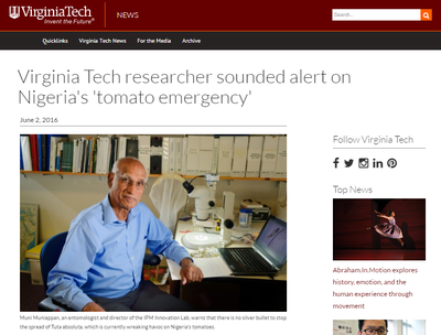 Virginia Tech Researcher Sounded Alert on Nigeria's 'Tomato Emergency'